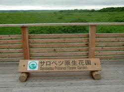 Sarobetsu Primeval Garden