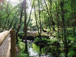 Parque do Mino