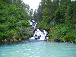 Alaska River Adventures - Day Tours