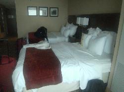 Comfy beds! Double Queen Room