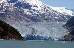Adventure Bound Alaska Tracy Arm Glacier Cruise