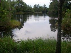 Wekiwa Springs State Park