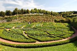 Jardins et Chateau de La Chatonniere