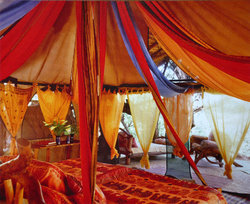 Elephant Watch Camp & Safaris