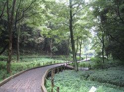 Higashitakane Forestry Park