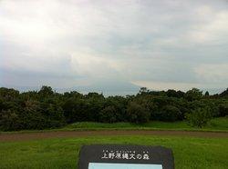 Uehara Jomon Forest