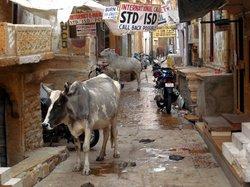 Gandhi Chowk Street