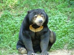 ZooParc de Trégomeur