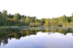 Anggardsbergens Naturreservat