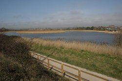 RSPB Weymouth Wetlands at Radipole Lake Nature Reserve