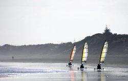 Muriwai Surf School