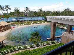 """View from balcony """"Dolphin View Room"""""""