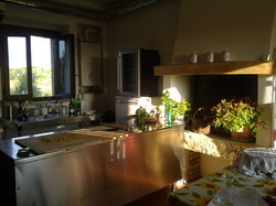 Decugnano Dei Barbi Cooking Class