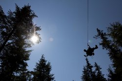 Grizzly Falls Ziplining Expedition