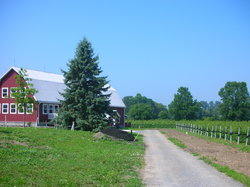 Prince Edward County Wine and Culinary Tours