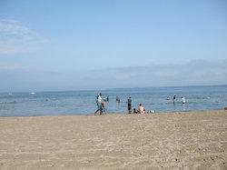 lake simcoe beach