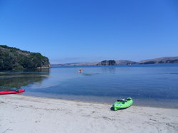 Tomales Bay Point
