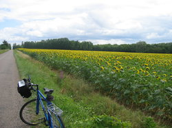 Bourgogne Randonnées