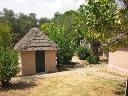 Dionysus Camping Village