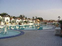 The pool early morning