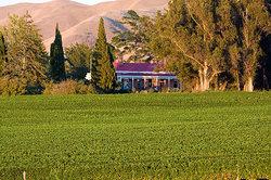 Ugbrooke Country Estate