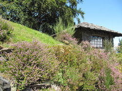 Giardino Botanico Alpinia