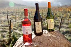 Karusa Vineyards
