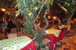 Lemon Tree Garden Taverna