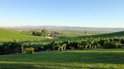 Bitner Vineyards B&B
