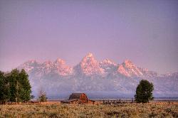 Mormon Row barn and Teton range (35967474)