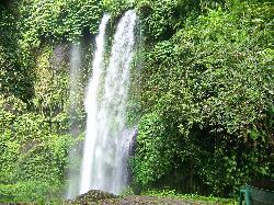 Tiu Kelep Waterfall, Lombok (36036078)