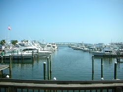 Shipp's Harbour Grill
