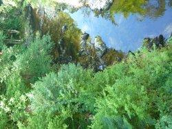 La voie Verte des Haute-Vosges