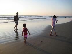 Explore the Beach
