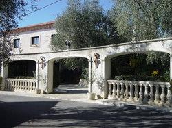 L'oliveraie chez grec