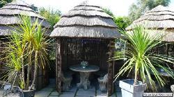 Petal-a-Pot Tea Room & Bistro