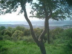 Camlica Hill