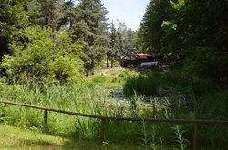 Giardino Botanico Alpino di Pietra Corva