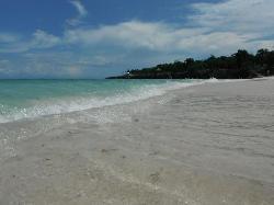 The wonderfully warm sea
