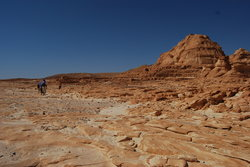 Sinai Safari - Day Tours