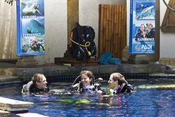 Gangga Divers at Villa Almarik
