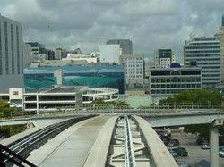迈阿密城市轻轨观光