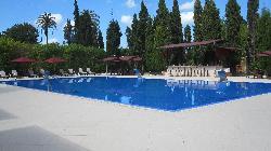the beautiful large pool