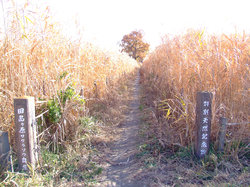 Sakuraso Park