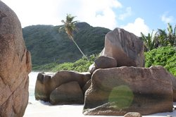 Praia Anse Coco