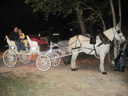Olden Days Carriage Tours