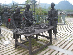 Da Hong Pao (Big Red Robe) Scenic Area