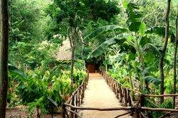 EcoMuseo del Cacao