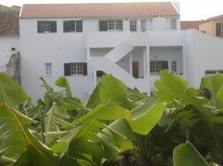 Banana Manor