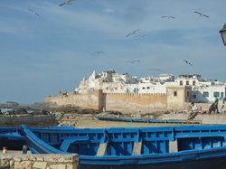 Byvoldene i Essaouira